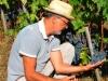 Cortona-Naturwein-TiDPress (1)