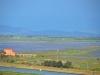 Castiglione-Pescaia-Foto-TidPress (17)