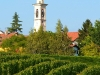 Weinbergen-Italien-TiDPress (9)