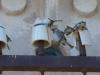 Sardinien-Molentargius-Saline-TiDPress  (10)