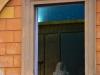 Vatikanische-Museen-Foto-TiDPress (10)