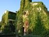 Commenda-Vignanello-TiDPress (1)