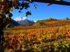 C -Aostatal-TiDPress (4)