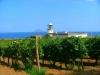 Insel-Salina-TiDPress (1)