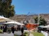 Rom-Wein-und-Kunst-Terra-Italia (3)
