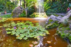 """Die """"Giardini La Mortella"""" Zum Vergrößern: Klick auf das Foto"""