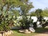 ApulienBike-rene-koelliker_6748