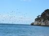 baia-dei-faraglioni-foto-tidpress-8