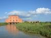 castiglione-pescaia-foto-tidpress-16