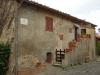 castiglione-pescaia-foto-tidpress-24