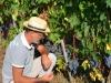 Cortona-Naturwein-TiDPress (2)
