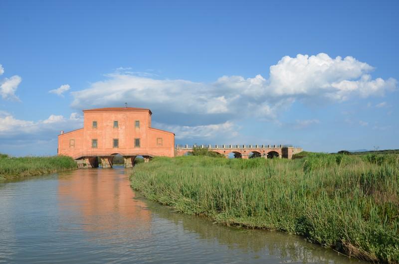 Castiglione-Pescaia-Foto-TidPress (16)