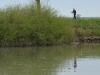 Venetien-Fluss-Sile-Paolo-Gianfelici (11)