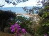 Ischia-Elvira-Dippoliti (6)