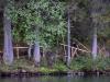 Fusine-Seen-Foto-TiDPress (5)