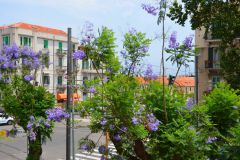 Messina-VMaison-Hotel-Elvira-Dippoliti-4
