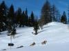 alta-val-pusteria-foto-tidpress-5