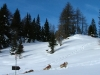 Alta Val Pusteria-Foto-Tid-Press