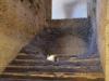 Rom-Stadion- Domitian-Foto-TiDPress (5)