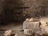 Rom-Stadion- Domitian-Foto-TiDPress (8)