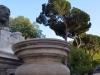 Rom-Stein-Zoo-Paolo-Gianfelici (17)