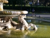 Rom-Stein-Zoo-Paolo-Gianfelici (25)