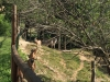 Neugierig aber nett, Agrotourismus Cà Basino