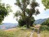Wanderweg mit Aussicht, Agrotourismus Cà Basino