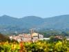 Schloss-Ruspoli-Vignanello-TiDPress (8)