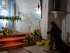 Gallipoli-Apulien-Heilige-Woche-Foto-Terra-Italia (6)