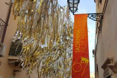 Taormina-Film-Fest-Elvira-Dippoliti-1