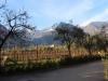 Trentino-rene-koelliker_6848-7