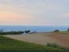Weinberge-Italien-TiDPress (10)