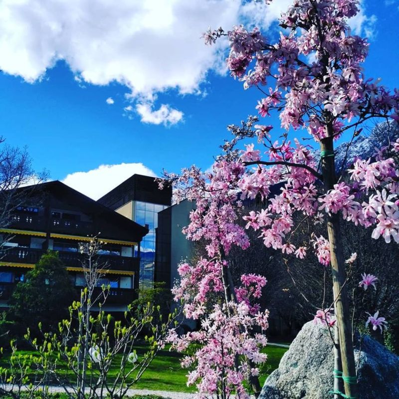 Foto-Hotel-Wiesenhof-Algund (2)