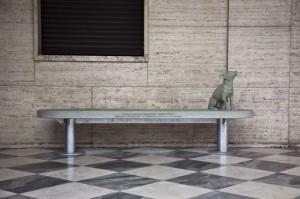 Alberto Garutti Il cane qui ritratto, Sammlung der Stiftung San Patrignano