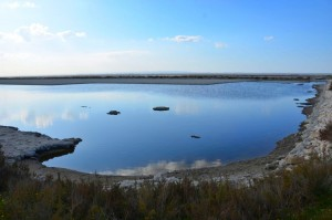 Naturpark der Feuchtgebiete