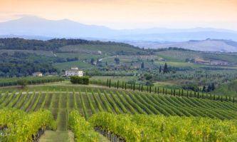 Die Hügel des Chianti Classico