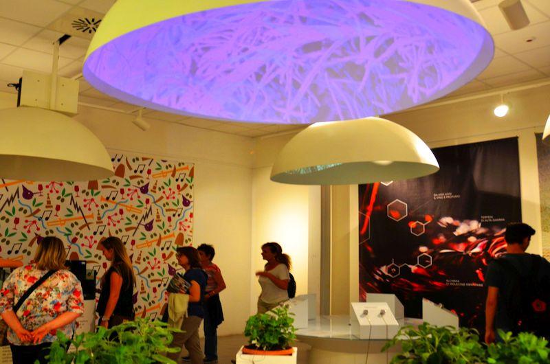 Die Expo Mailand 2015 und der Italien-Pavillon