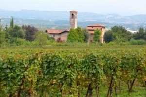 Franciacorta (Lombardei)