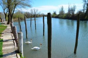 Precenicco, Fluss Stella