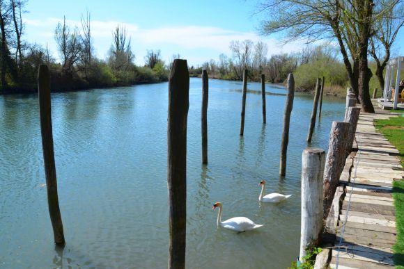 Friaul. Fluss Stella, Precenicco, Foto TiDPress