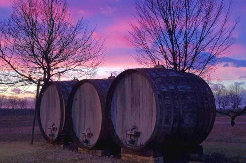 """Wein und Wasser: Die schöne Umgebung des Weingutes """"Isola Augusta"""""""