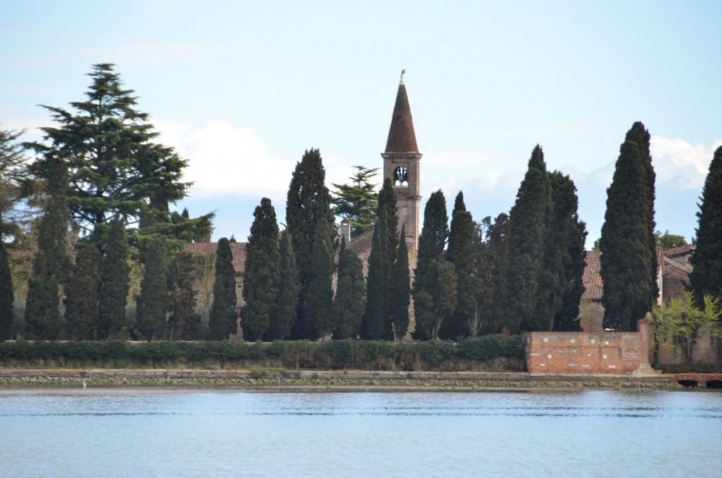 Die Zypressen von San Francesco del Deserto