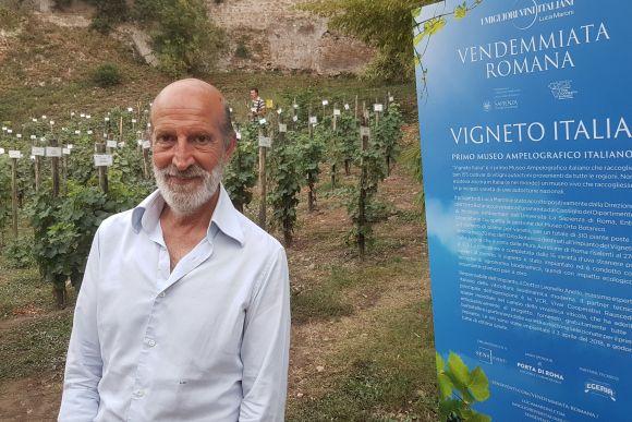 "Rom, Luca Maroni, ""Vigneto Italia"", Foto TiDPress"