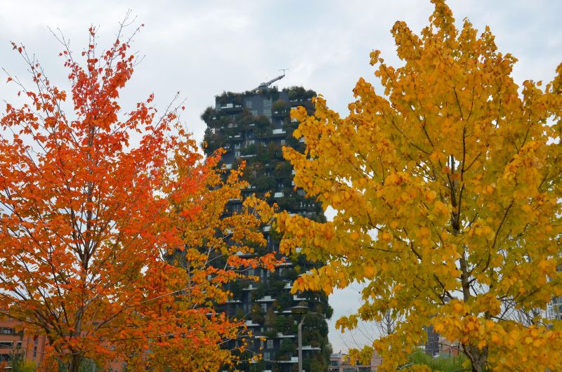 Mailand, Herbst in Porta Nuova