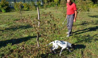 """Michele Di Rienzo von der regionalen Gärtnerei """"Selva del Campo"""""""