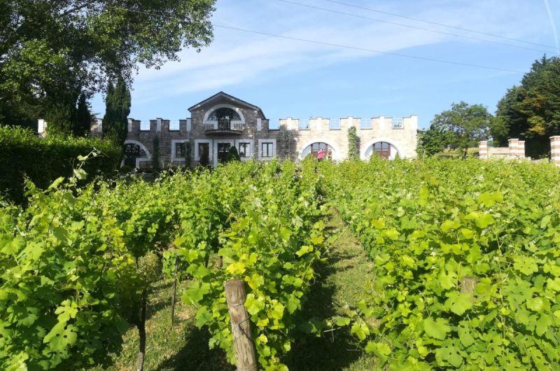 "Die ""Kathedrale des Weins"" in Orsara di Puglia"