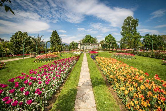 Terre Borromeo: Blütenpracht am Lago Maggiore