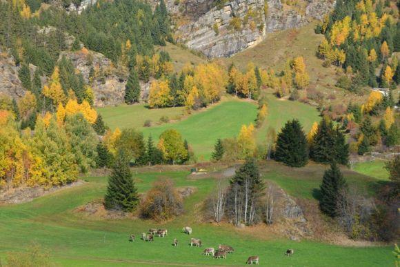 Südtirol: Herbst in den Bergen