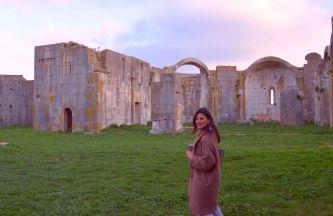 Antonella Fusco, Expertin für Kunstgeschichte von Venosa